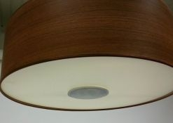 Downlight hanglamp, wootlook